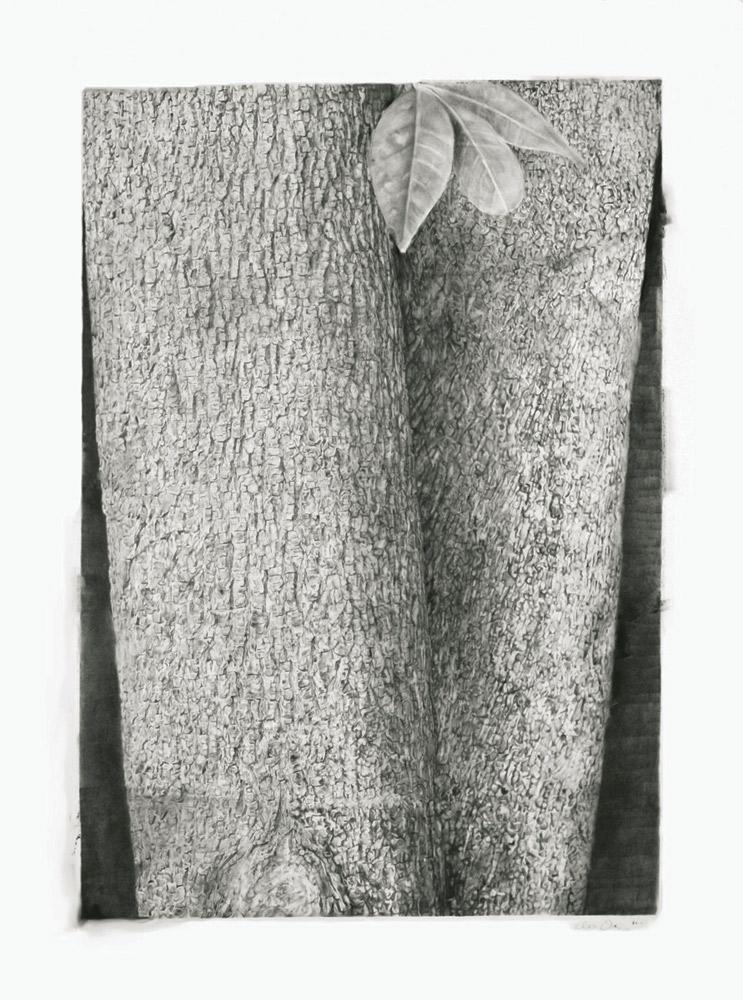 Treeform I