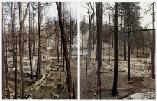 THINGS FALL APART, Wildfire #2, California